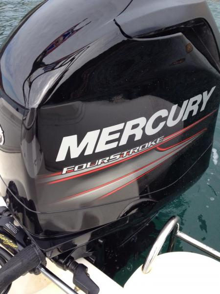 a new Mercury 115BHP Engine