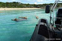 Pig Beach Excursion, Bahamas