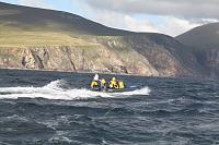 Merlin off the Antrim Coast