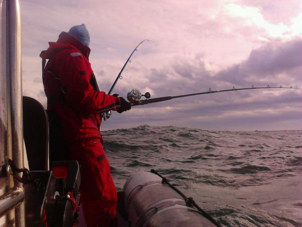 Nothing biting, not even mackerel. Lumpy seas too.