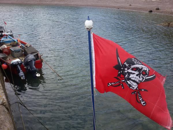 No sign of Jack Sparrow.