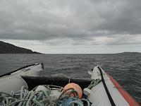 scotland 2 392