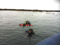 Divers happy return after playing with the seals!